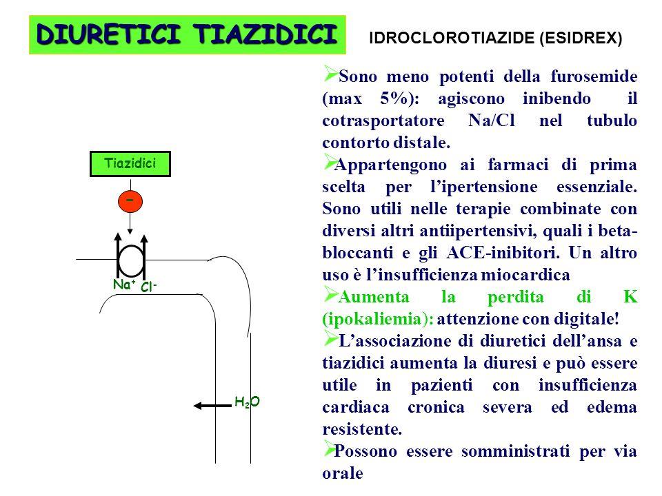 DIURETICI TIAZIDICI Sono meno potenti della furosemide (max 5%): agiscono inibendo il cotrasportatore Na/Cl nel tubulo contorto distale. Appartengono