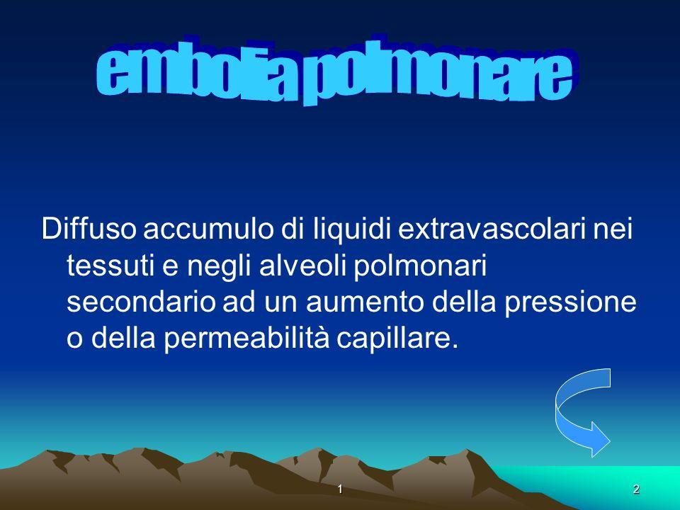 12. Diffuso accumulo di liquidi extravascolari nei tessuti e negli alveoli polmonari secondario ad un aumento della pressione o della permeabilità cap