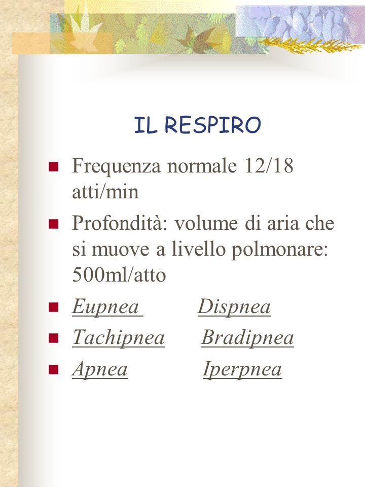 IL RESPIRO Frequenza normale 12/18 atti/min Profondità: volume di aria che si muove a livello polmonare: 500ml/atto Eupnea Dispnea Tachipnea Bradipnea
