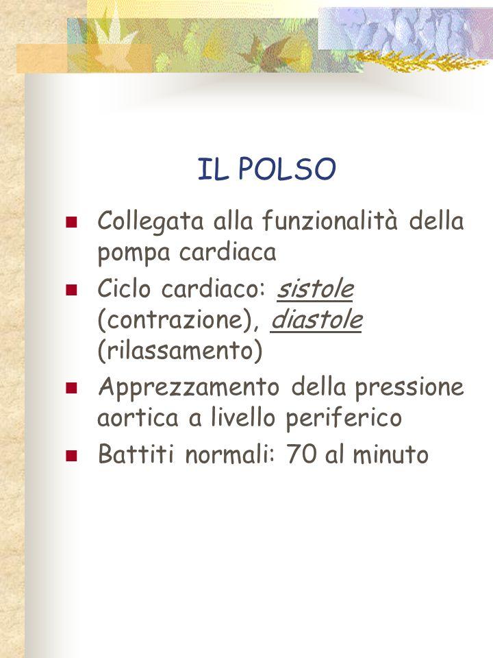 IL POLSO Collegata alla funzionalità della pompa cardiaca Ciclo cardiaco: sistole (contrazione), diastole (rilassamento) Apprezzamento della pressione