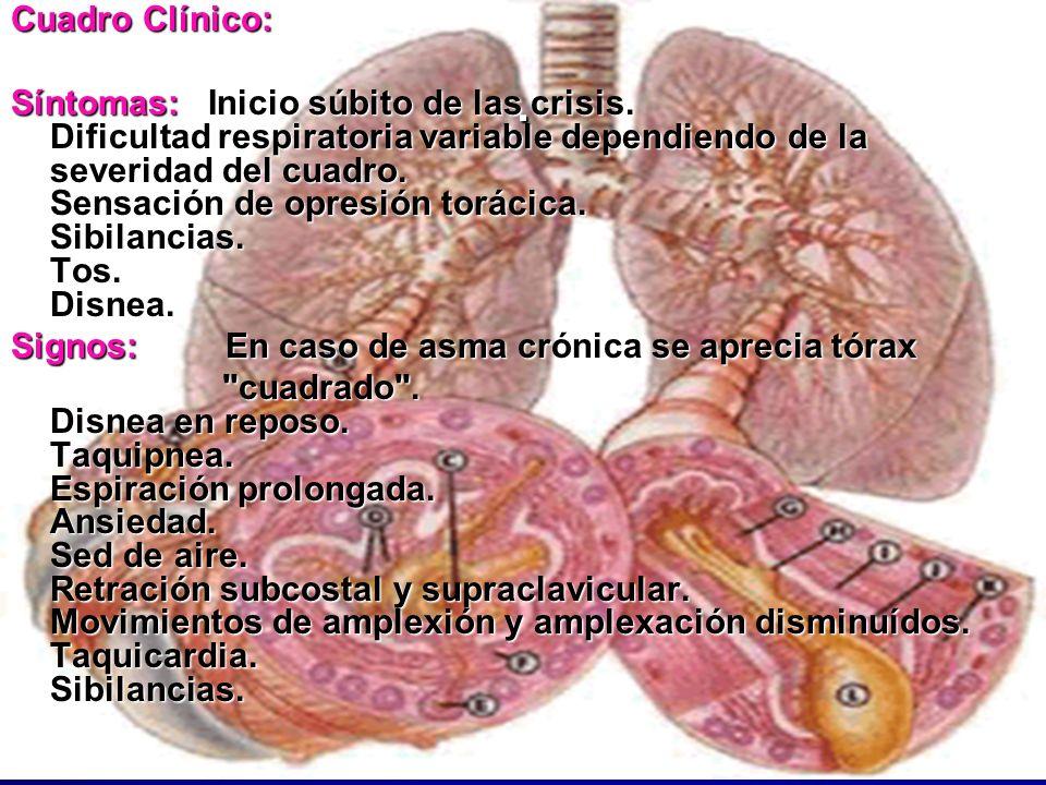1 19. Fisiopatología del Asma NO Alérgica Fisiopatología del Asma NO Alérgica Hasta ahora, la medicina alópata no ha podido explicar los porcesos que