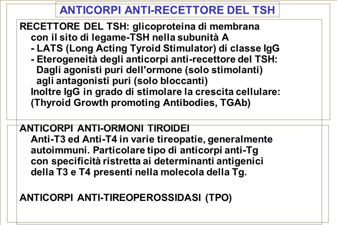 ANTICORPI ANTI-RECETTORE DEL TSH RECETTORE DEL TSH: glicoproteina di membrana con il sito di legame-TSH nella subunità A - LATS (Long Acting Tyroid St