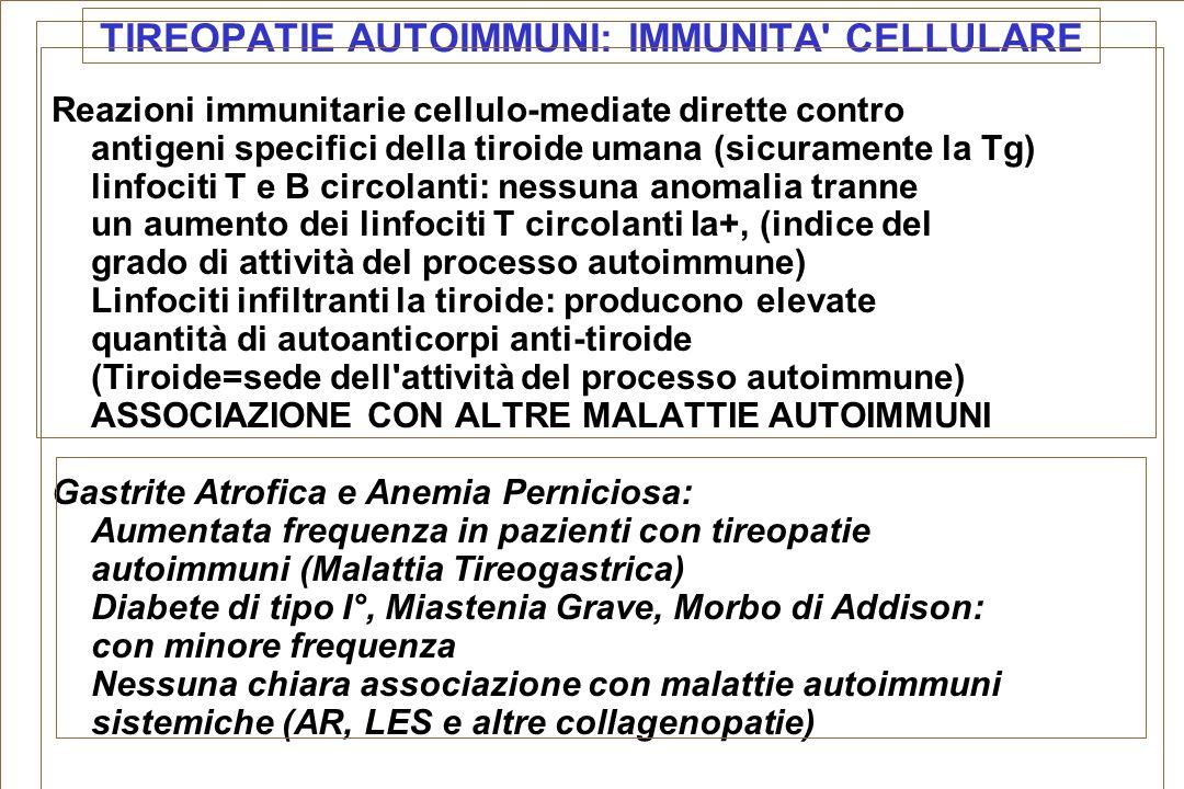 TIREOPATIE AUTOIMMUNI: IMMUNITA' CELLULARE Reazioni immunitarie cellulo-mediate dirette contro antigeni specifici della tiroide umana (sicuramente la