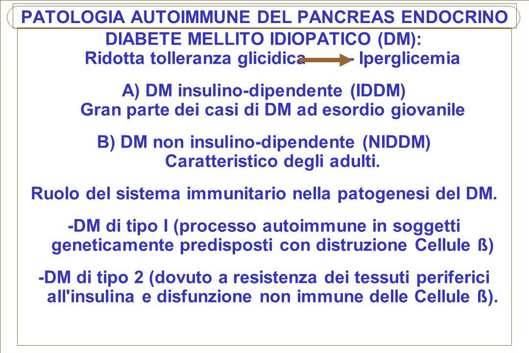 PATOLOGIA AUTOIMMUNE DEL PANCREAS ENDOCRINO DIABETE MELLITO IDIOPATICO (DM): Ridotta tolleranza glicidica ------- Iperglicemia A) DM insulino-dipenden