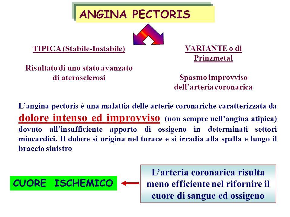 Langina pectoris è una malattia delle arterie coronariche caratterizzata da dolore intenso ed improvviso (non sempre nellangina atipica) dovuto allins