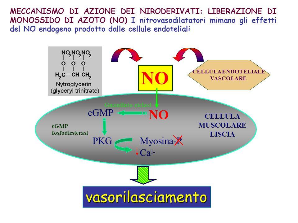 Effetti dei nitrovasodilatatori (Nitrati) I vasi a capacitanza sono più sensibili alleffetto rilasciante dei nitrovasodilatatori.