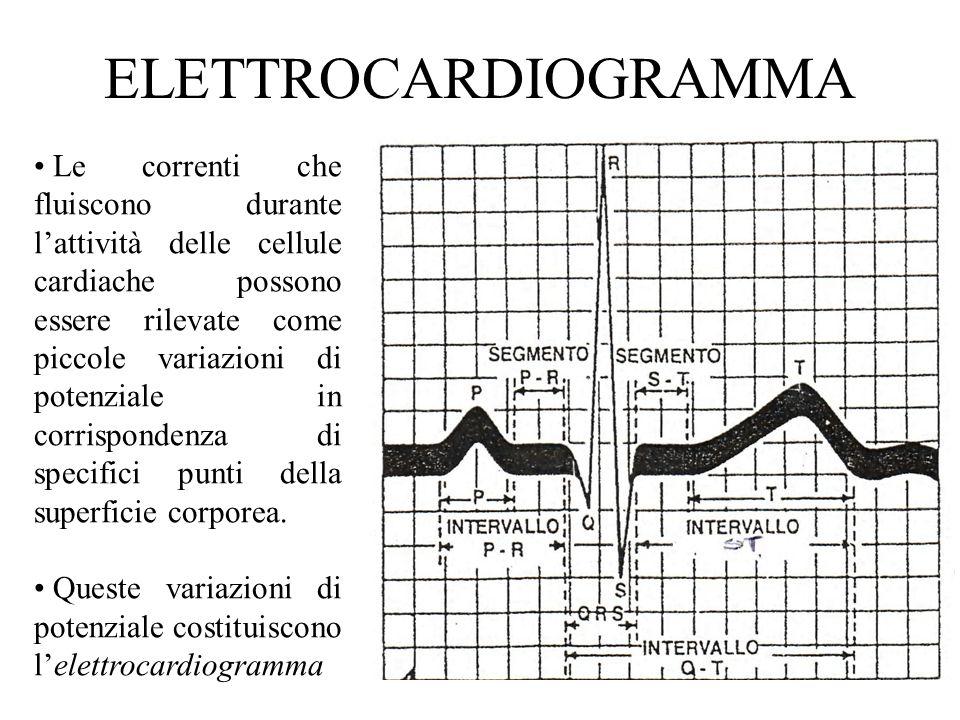 ELETTROCARDIOGRAMMA Le correnti che fluiscono durante lattività delle cellule cardiache possono essere rilevate come piccole variazioni di potenziale