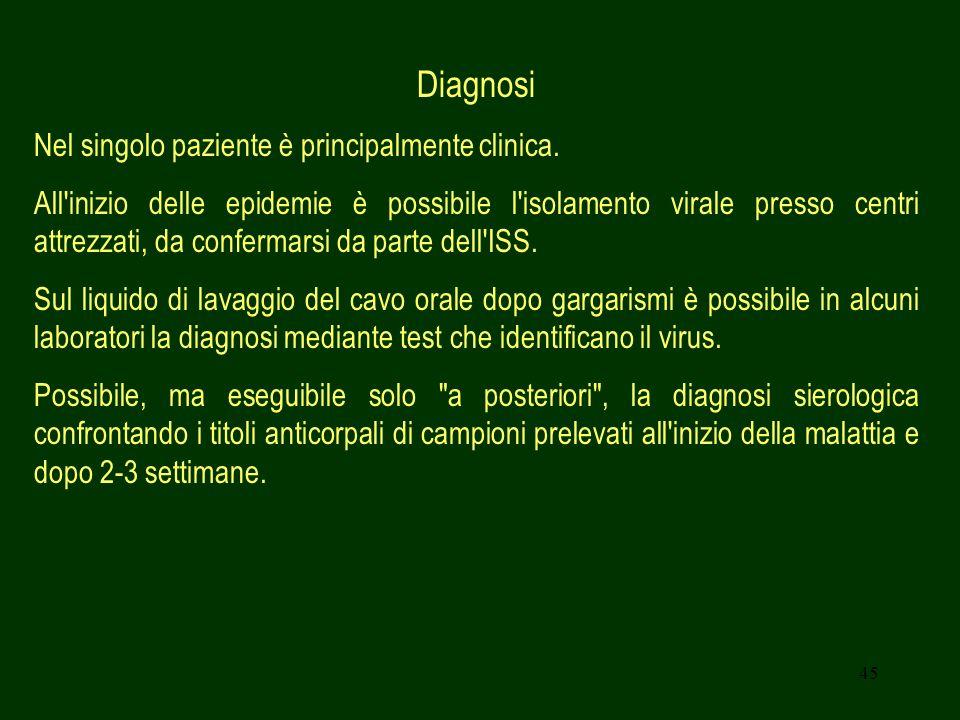 45 Diagnosi Nel singolo paziente è principalmente clinica. All'inizio delle epidemie è possibile l'isolamento virale presso centri attrezzati, da conf