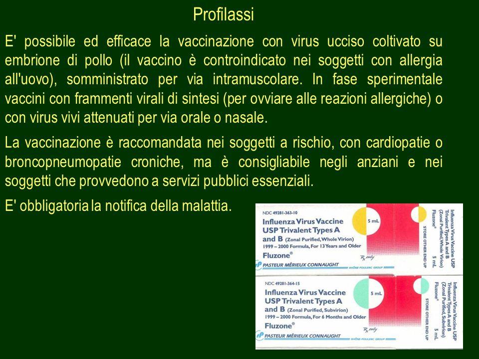 48 Profilassi E' possibile ed efficace la vaccinazione con virus ucciso coltivato su embrione di pollo (il vaccino è controindicato nei soggetti con a