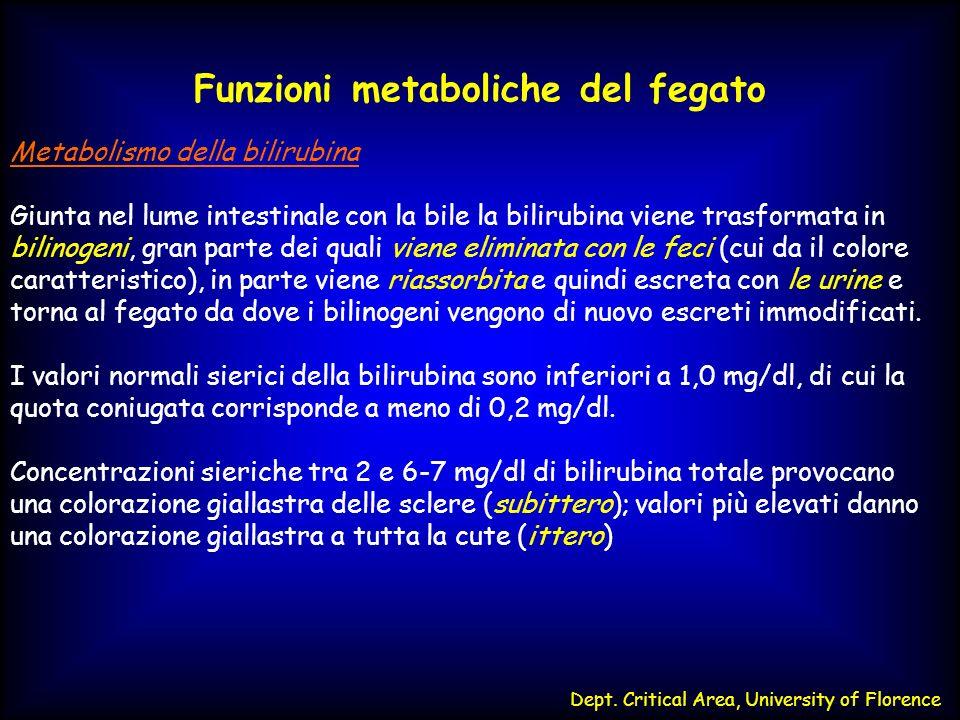 CIRCOLAZIONE ENTEROEPATICA DELLA BILIRUBINA FEGATO Bilirubina non- coniugata Stercobilina e urobilina UROBILINOGENI Escrezione Fecale BILIRUBINA DIGLUCURONIDE INTESTINO TENUE Beta-glicuronidasi Riduzione da parte degli anaerobi intestinali Ossidazione spontanea COLON RENE Eliminazione nellurina