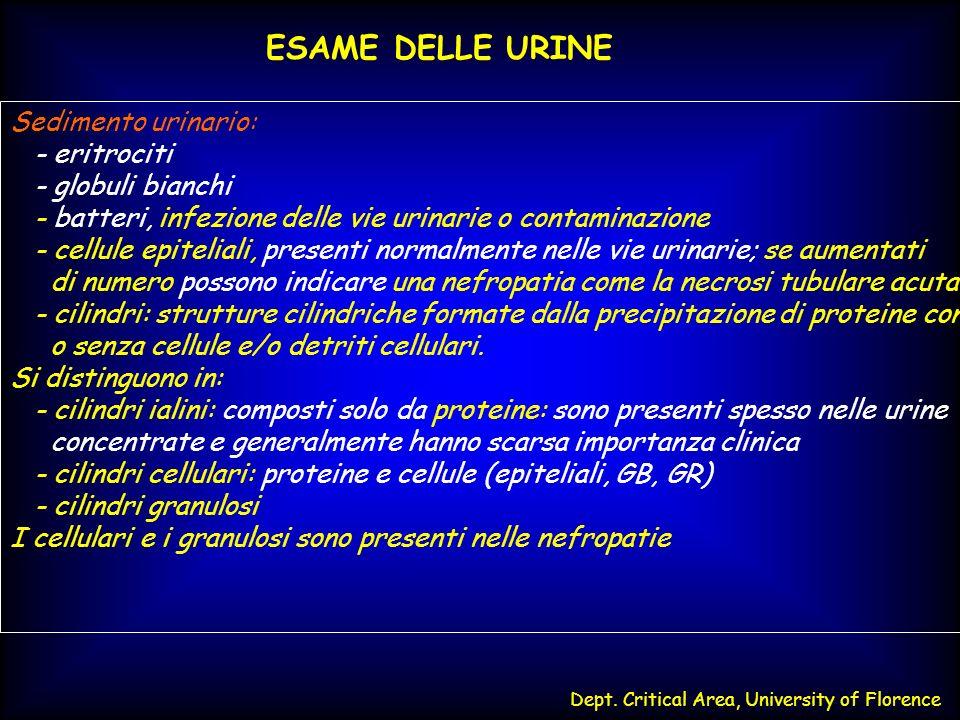 Dept. Critical Area, University of Florence ESAME DELLE URINE Sedimento urinario: - eritrociti - globuli bianchi - batteri, infezione delle vie urinar