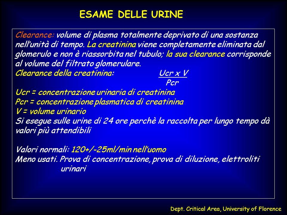 Dept. Critical Area, University of Florence ESAME DELLE URINE Clearance: volume di plasma totalmente deprivato di una sostanza nellunità di tempo. La