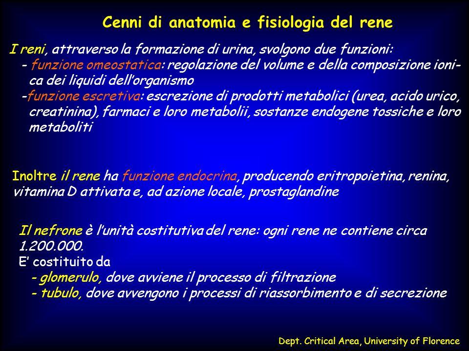 Dept. Critical Area, University of Florence Cenni di anatomia e fisiologia del rene I reni, attraverso la formazione di urina, svolgono due funzioni: