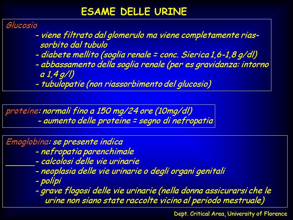 Dept. Critical Area, University of Florence ESAME DELLE URINE Glucosio - viene filtrato dal glomerulo ma viene completamente rias- sorbito dal tubulo