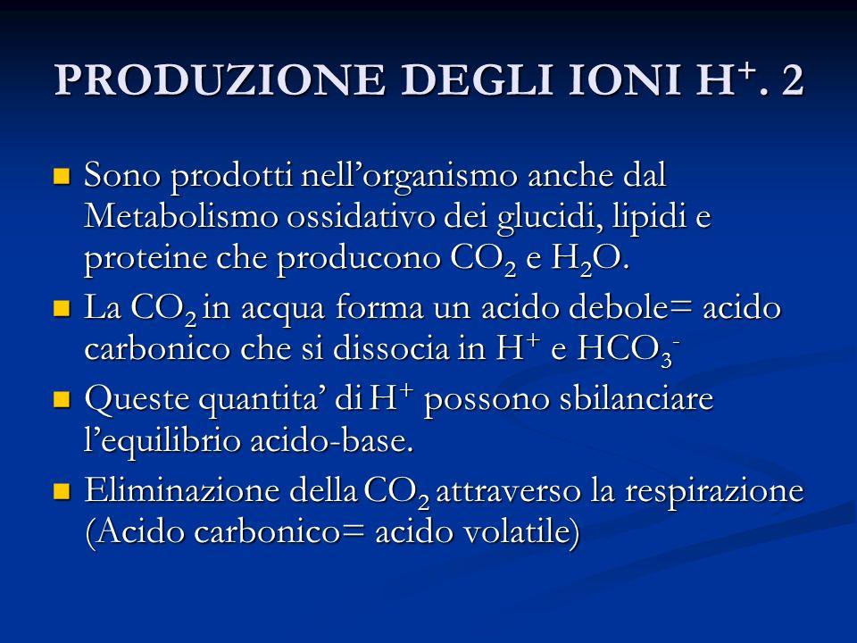 PRODUZIONE DEGLI IONI H +. 3