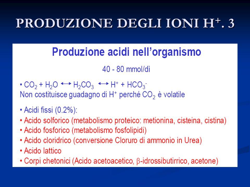 PRODUZIONE E ELIMINAZIONE DI H+