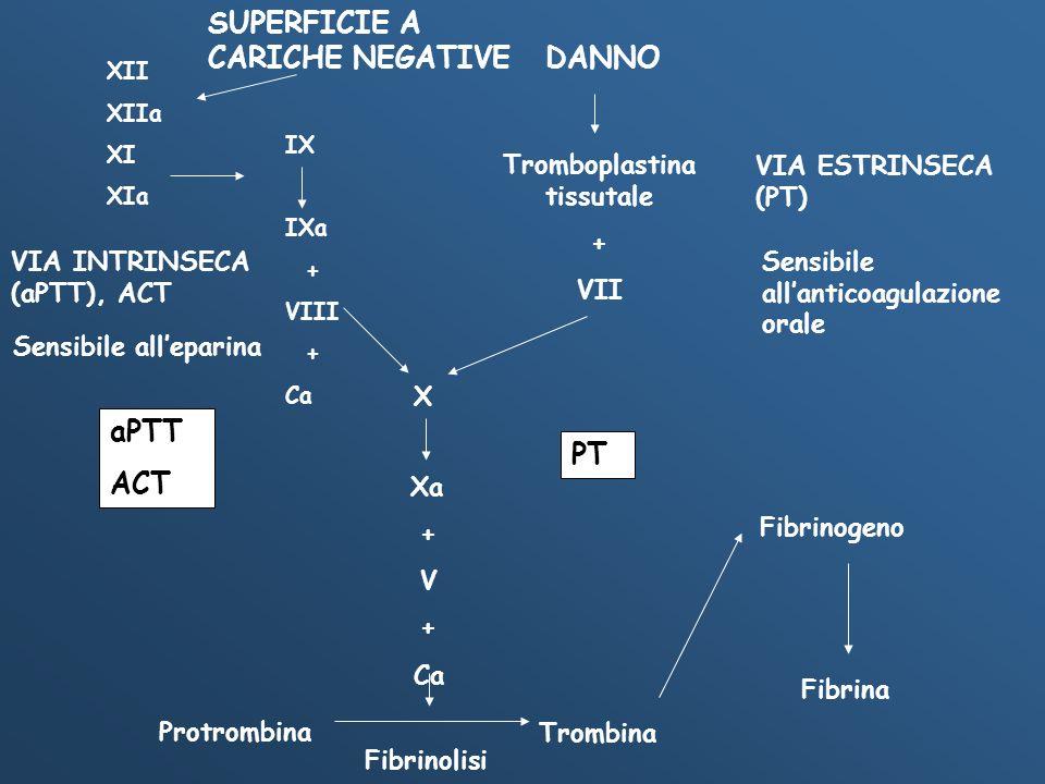 XII XIIa XI XIa IX IXa + VIII + Ca DANNO Tromboplastina tissutale + VII X Xa + V + Ca Protrombina Trombina Fibrinogeno Fibrina Fibrinolisi aPTT ACT PT
