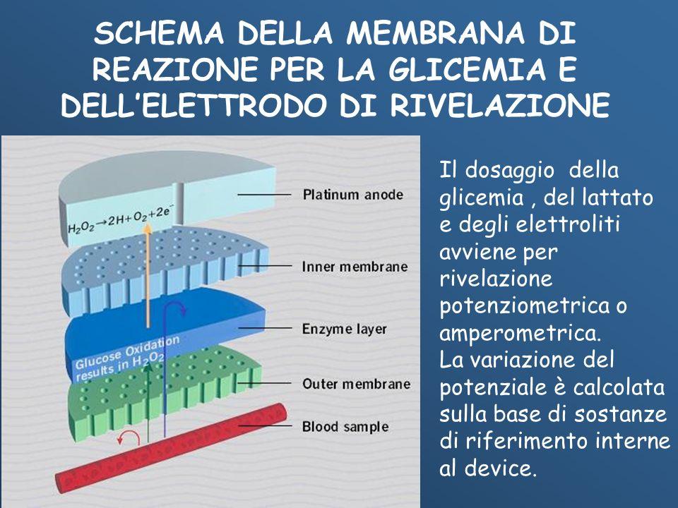 SCHEMA DELLA MEMBRANA DI REAZIONE PER LA GLICEMIA E DELLELETTRODO DI RIVELAZIONE Il dosaggio della glicemia, del lattato e degli elettroliti avviene p