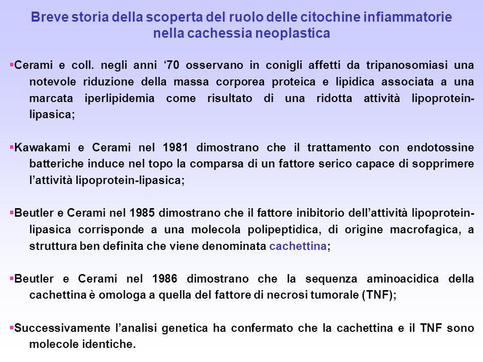 Breve storia della scoperta del ruolo delle citochine infiammatorie nella cachessia neoplastica Cerami e coll. negli anni 70 osservano in conigli affe