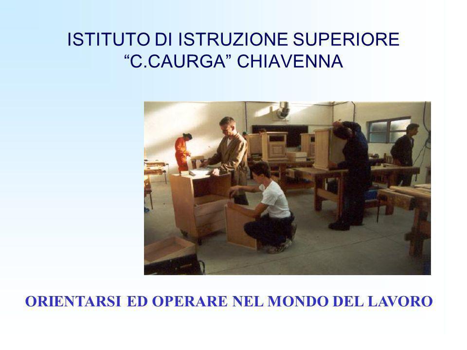 ISTITUTO DI ISTRUZIONE SUPERIORE C.CAURGA CHIAVENNA ORIENTARSI ED OPERARE NEL MONDO DEL LAVORO