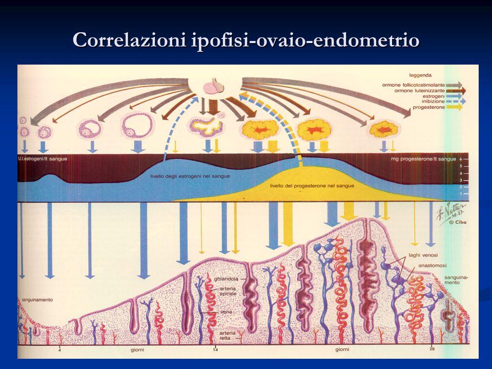 11L. Savino Correlazioni ipofisi-ovaio-endometrio