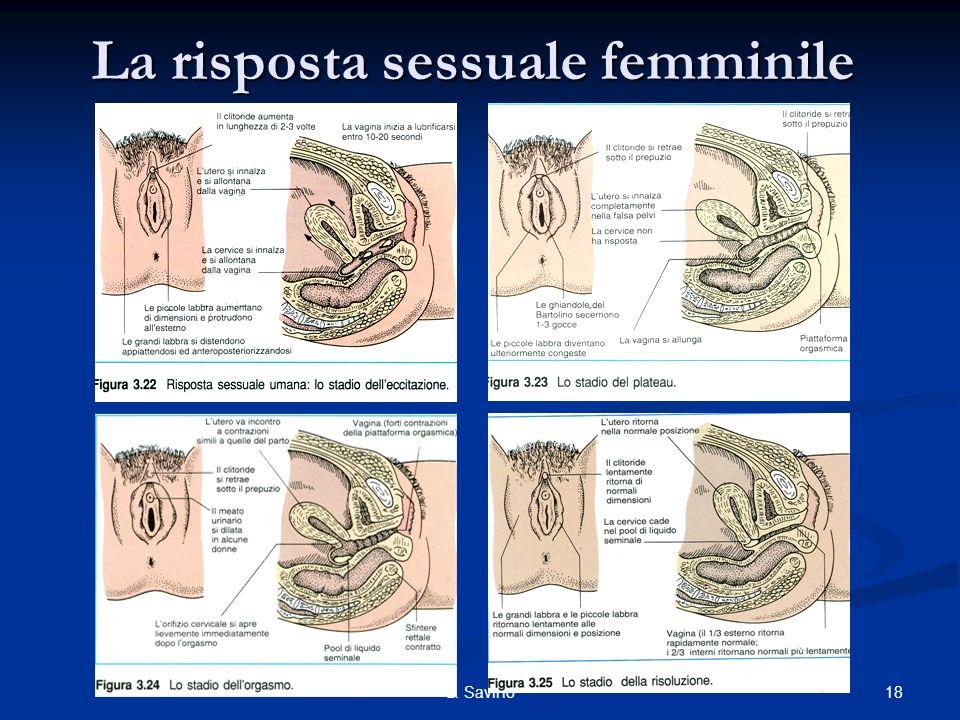 18L. Savino La risposta sessuale femminile