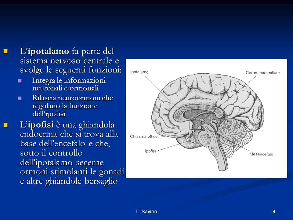 4L. Savino Lipotalamo fa parte del sistema nervoso centrale e svolge le seguenti funzioni: Lipotalamo fa parte del sistema nervoso centrale e svolge l