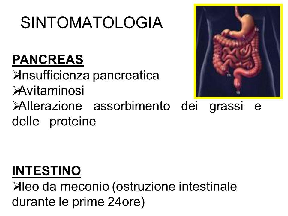 SINTOMATOLOGIA PANCREAS Insufficienza pancreatica Avitaminosi Alterazione assorbimento dei grassi e delle proteine INTESTINO Ileo da meconio (ostruzio