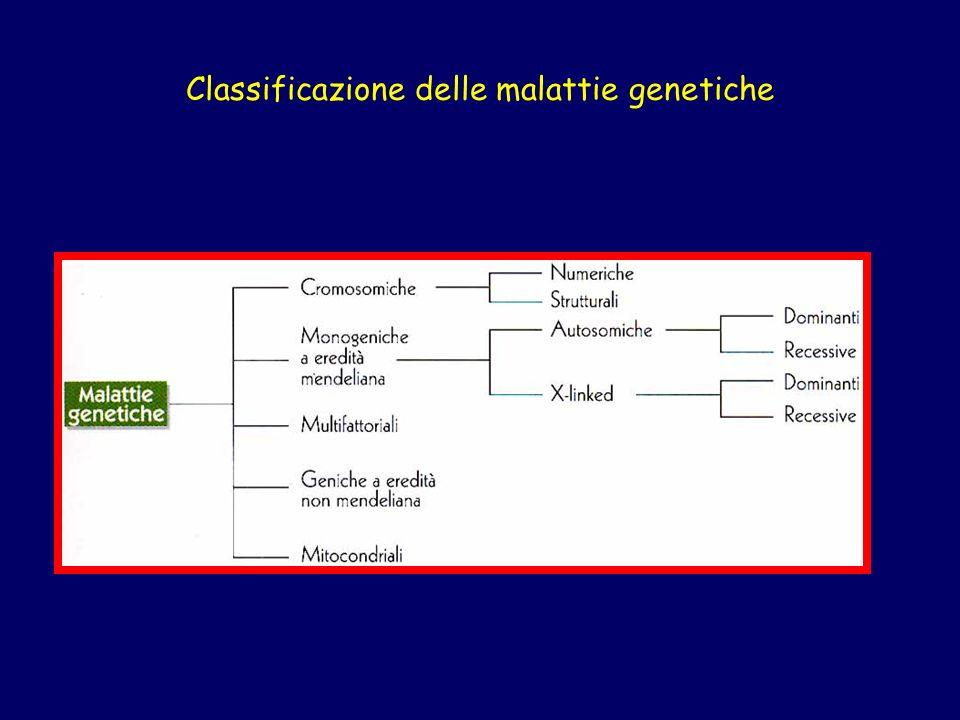 Esempio di segregazione di un allele causa di una malattia autosomica recessiva in consanguinei