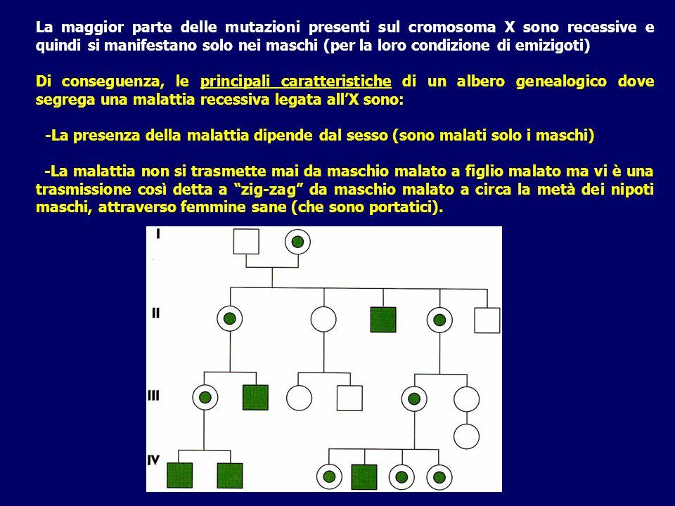 La maggior parte delle mutazioni presenti sul cromosoma X sono recessive e quindi si manifestano solo nei maschi (per la loro condizione di emizigoti)