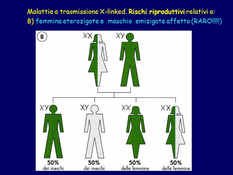 Malattie a trasmissione X-linked. Rischi riproduttivi relativi a: B) femmina eterozigote e maschio emizigote affetto (RARO!!!!!)