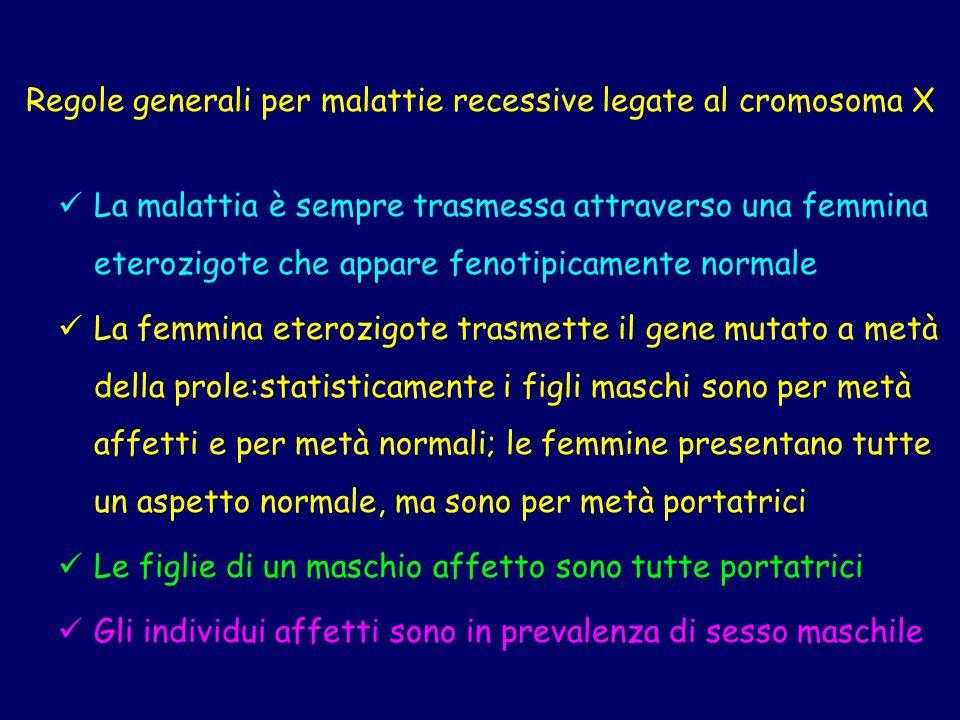 Regole generali per malattie recessive legate al cromosoma X La malattia è sempre trasmessa attraverso una femmina eterozigote che appare fenotipicame