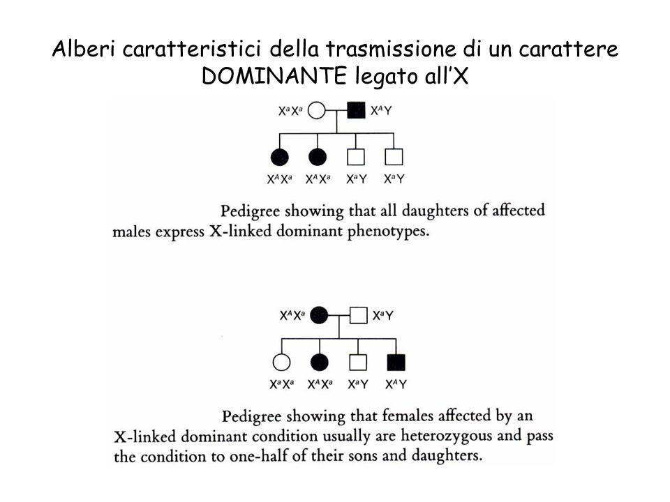 Alberi caratteristici della trasmissione di un carattere DOMINANTE legato allX