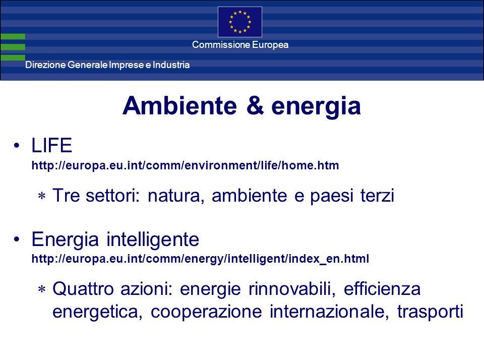 Direzione Generale Imprese Direzione Generale Imprese e Industria Commissione Europea Ambiente & energia LIFE http://europa.eu.int/comm/environment/life/home.htm Tre settori: natura, ambiente e paesi terzi Energia intelligente http://europa.eu.int/comm/energy/intelligent/index_en.html Quattro azioni: energie rinnovabili, efficienza energetica, cooperazione internazionale, trasporti