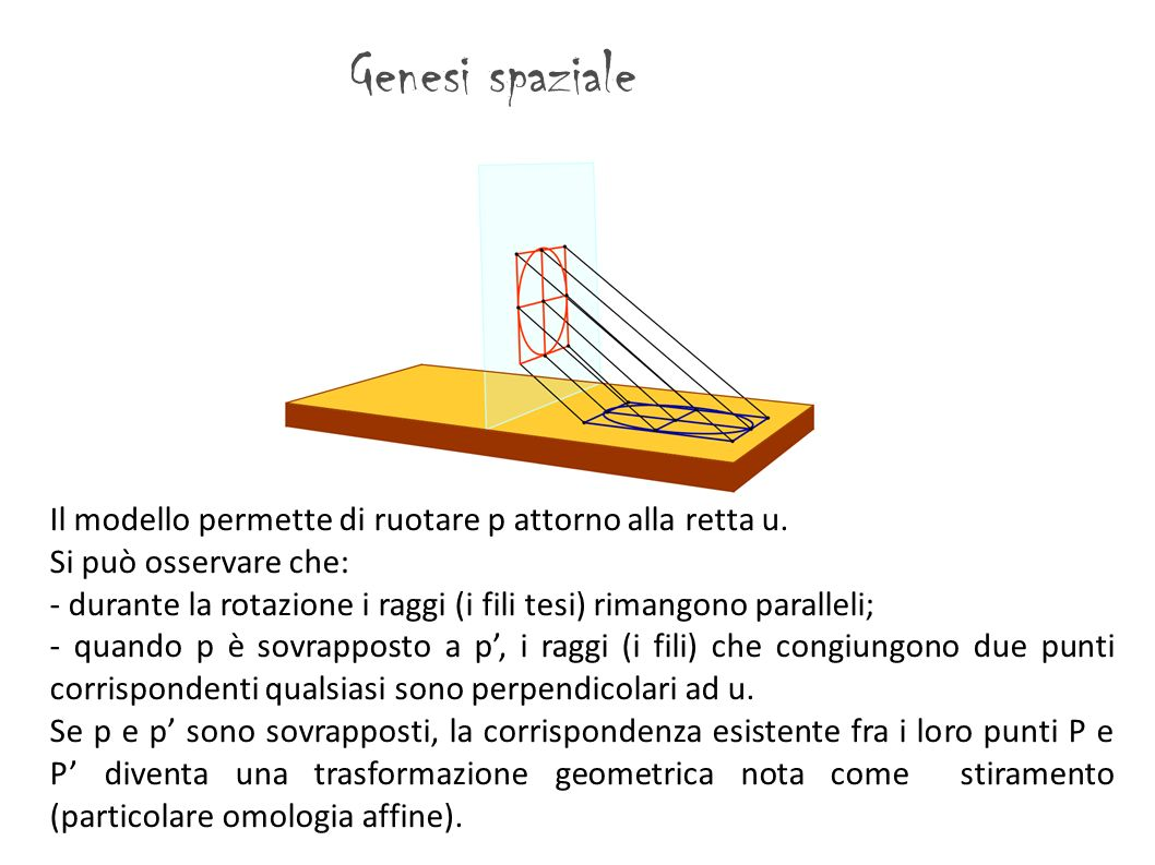Genesi spaziale Il modello permette di ruotare p attorno alla retta u. Si può osservare che: - durante la rotazione i raggi (i fili tesi) rimangono pa