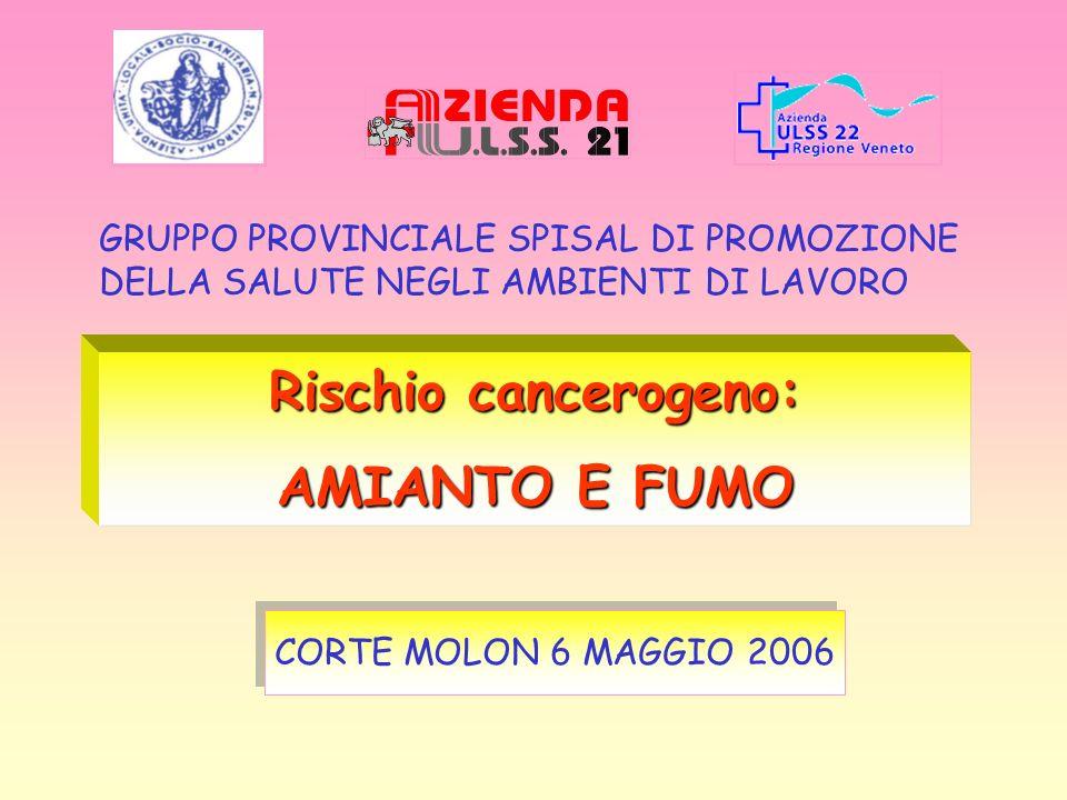 Rischio cancerogeno: AMIANTO E FUMO CORTE MOLON 6 MAGGIO 2006 GRUPPO PROVINCIALE SPISAL DI PROMOZIONE DELLA SALUTE NEGLI AMBIENTI DI LAVORO