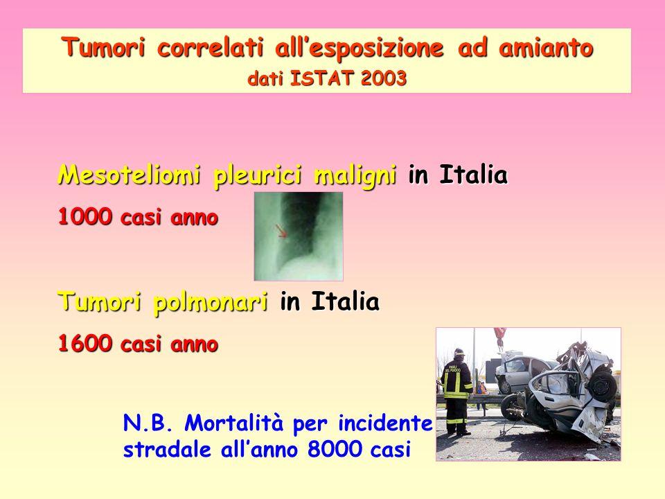 Mesoteliomi pleurici maligni in Italia 1000 casi anno Tumori polmonari in Italia 1600 casi anno N.B. Mortalità per incidente stradale allanno 8000 cas