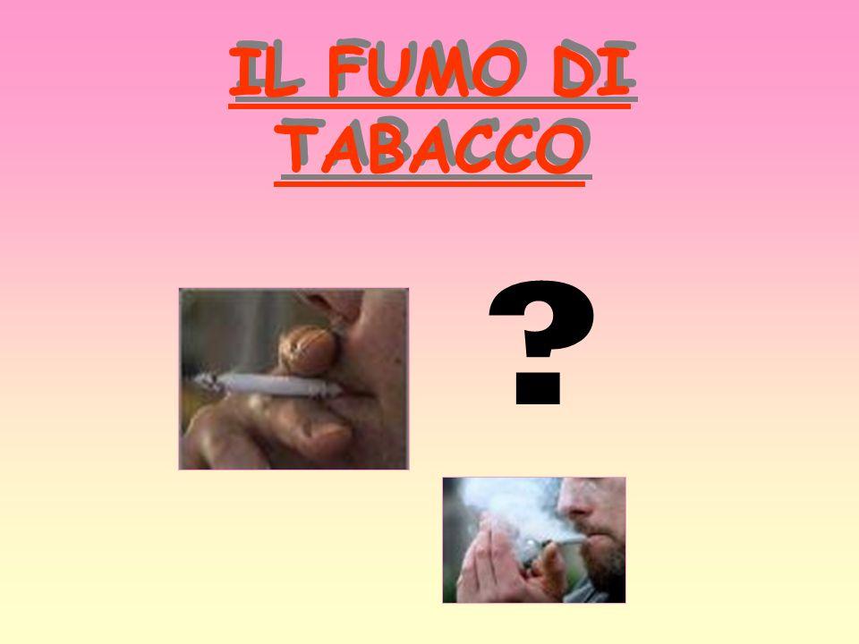 IL FUMO DI TABACCO ?