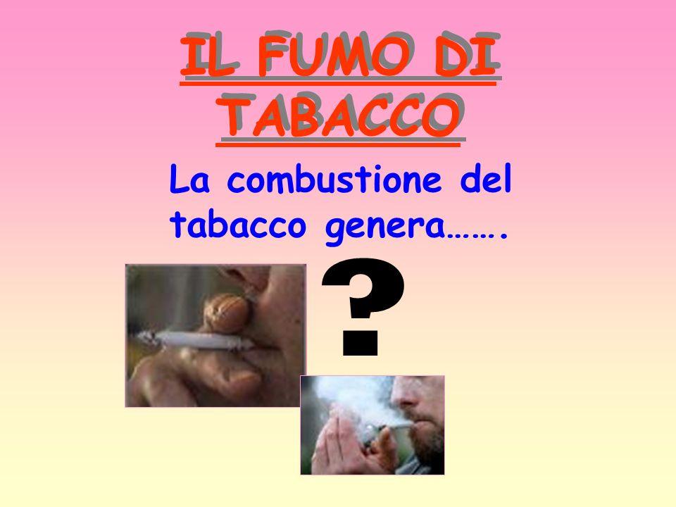 IL FUMO DI TABACCO La combustione del tabacco genera……. ?