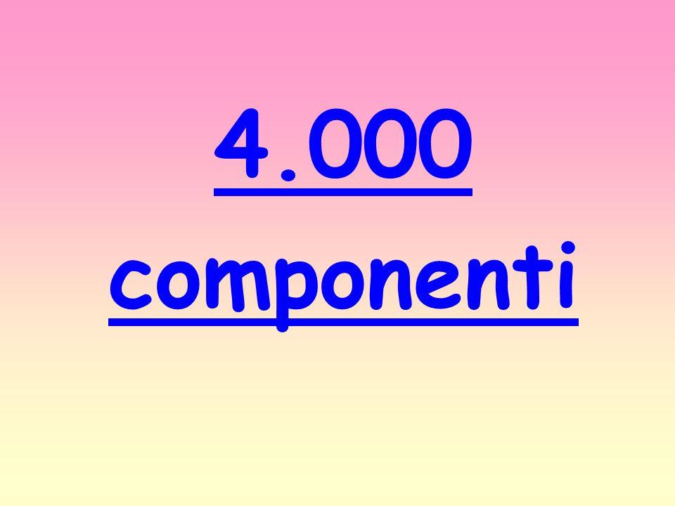 4.000 componenti