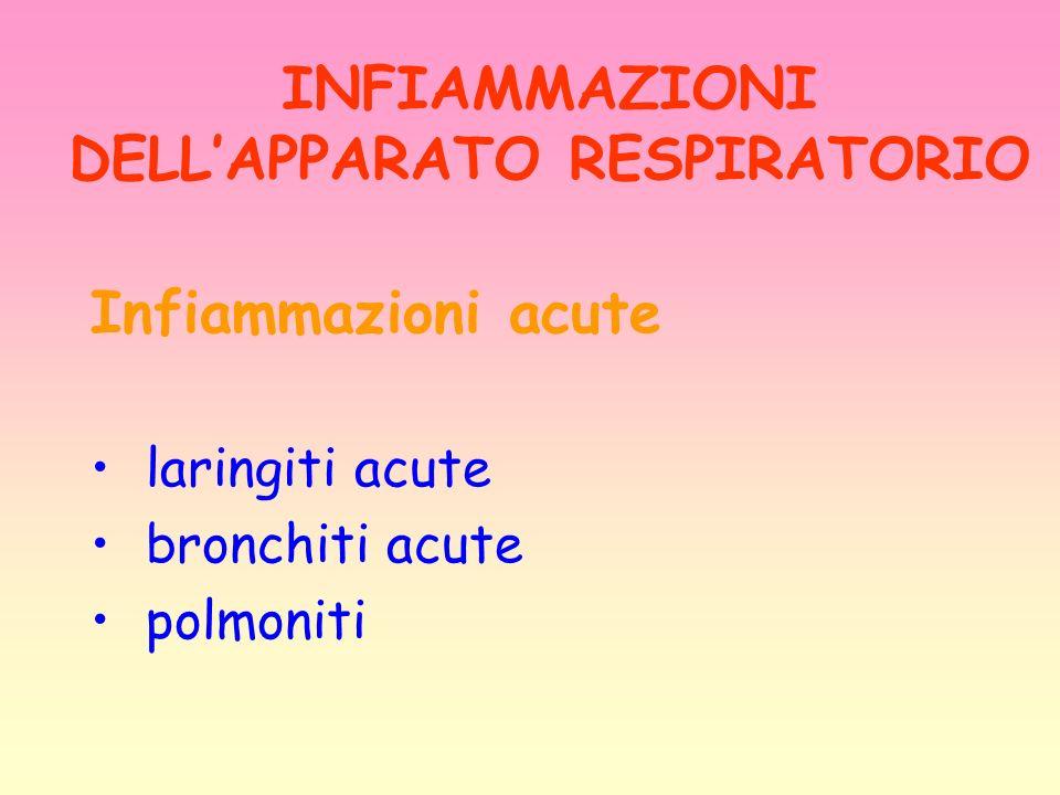 INFIAMMAZIONI DELLAPPARATO RESPIRATORIO Infiammazioni acute laringiti acute bronchiti acute polmoniti