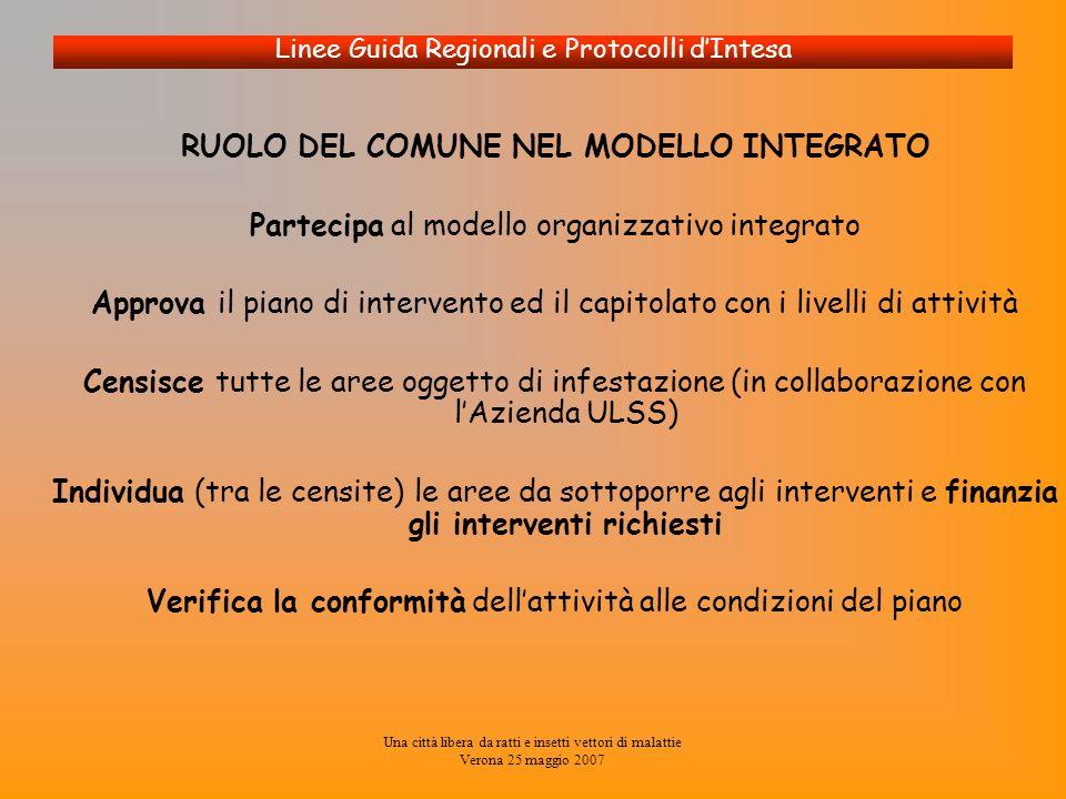 Una città libera da ratti e insetti vettori di malattie Verona 25 maggio 2007 Linee Guida Regionali e Protocolli dIntesa RUOLO DEL COMUNE NEL MODELLO