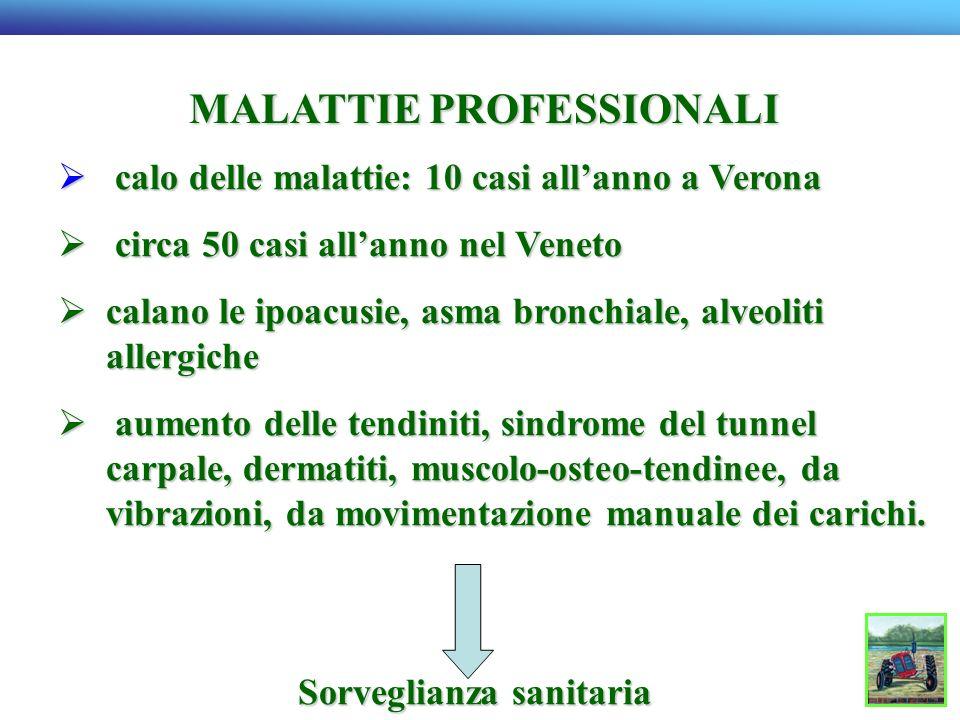 MALATTIE PROFESSIONALI calo delle malattie: 10 casi allanno a Verona calo delle malattie: 10 casi allanno a Verona circa 50 casi allanno nel Veneto ci