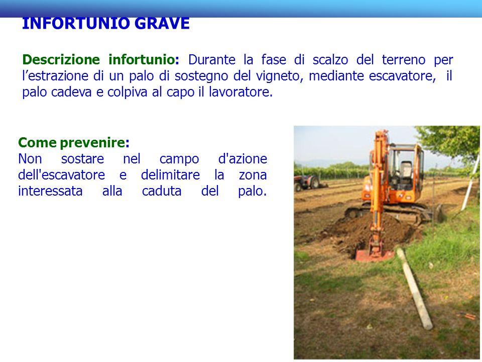 INFORTUNIO GRAVE Descrizione infortunio: Durante la fase di scalzo del terreno per lestrazione di un palo di sostegno del vigneto, mediante escavatore, il palo cadeva e colpiva al capo il lavoratore.
