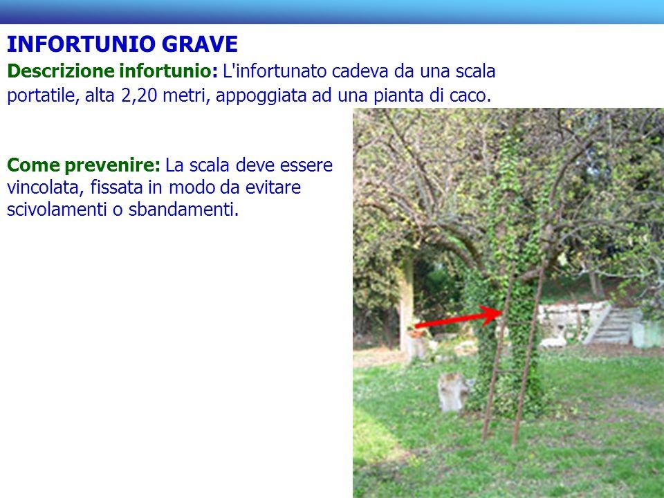 INFORTUNIO GRAVE Descrizione infortunio: L'infortunato cadeva da una scala portatile, alta 2,20 metri, appoggiata ad una pianta di caco. Come prevenir