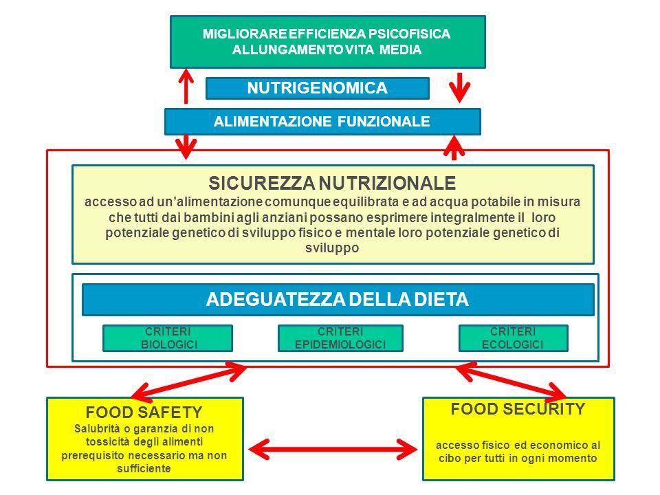 FOOD SAFETY Salubrità o garanzia di non tossicità degli alimenti prerequisito necessario ma non sufficiente FOOD SECURITY accesso fisico ed economico