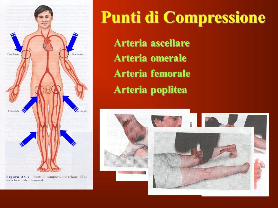 135 Punti di Compressione Arteria omerale Arteria femorale Arteria poplitea Arteria ascellare