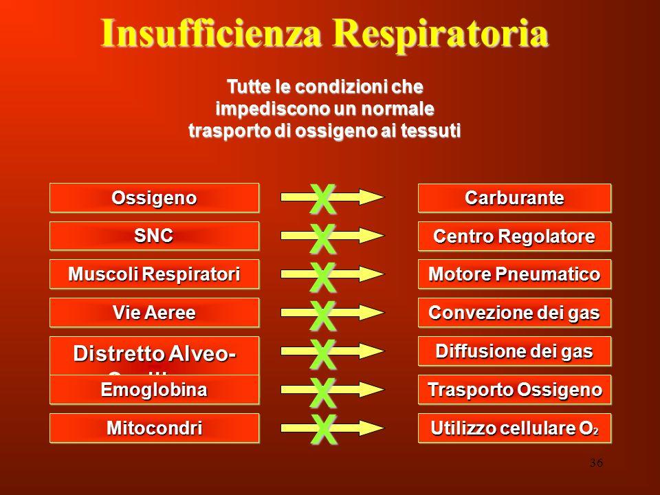 36 Insufficienza Respiratoria OssigenoOssigeno Tutte le condizioni che impediscono un normale trasporto di ossigeno ai tessuti SNCSNC Muscoli Respirat