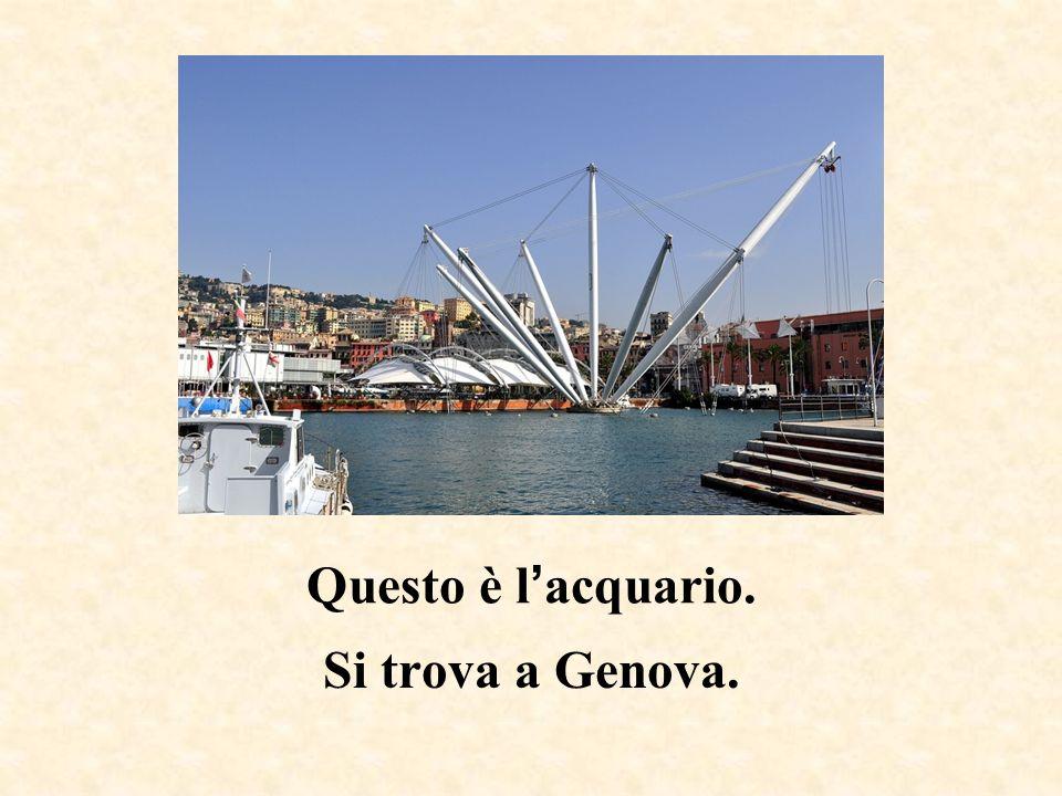 Questa è la Mole Antonelliana. Si trova a Torino.