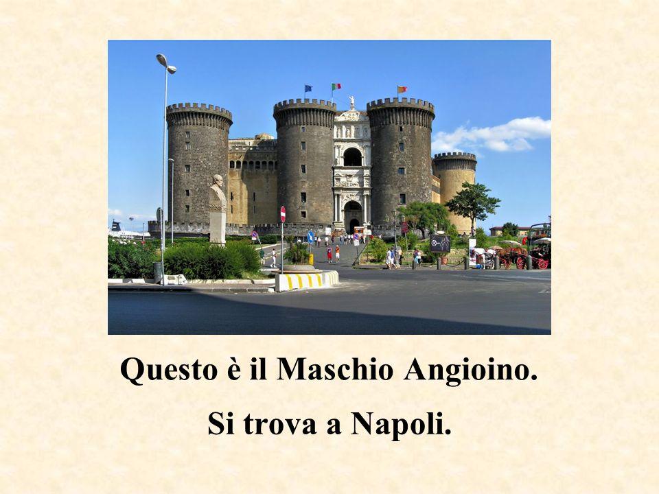 Questa è la Piazza del Campo. Si trova a Siena.